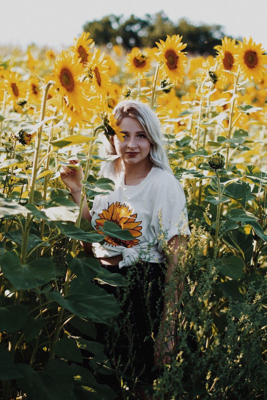 lisa schnatz Sonnenblumen feld
